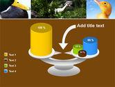 Duck PowerPoint Template#10