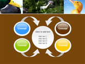 Duck PowerPoint Template#6