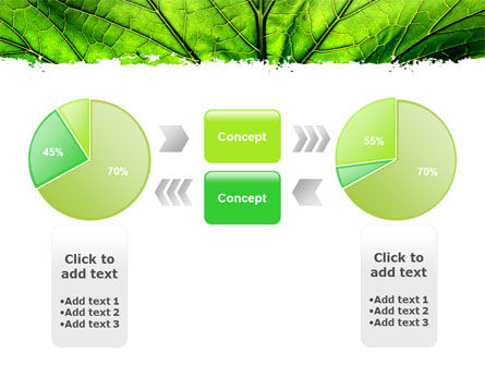 Leaf Close Up Texture PowerPoint Template Slide 11