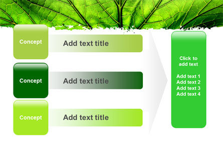 Leaf Close Up Texture PowerPoint Template Slide 12