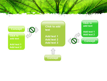 Leaf Close Up Texture PowerPoint Template Slide 13