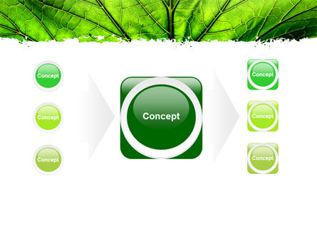 Leaf Close Up Texture PowerPoint Template Slide 17