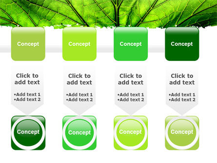 Leaf Close Up Texture PowerPoint Template Slide 18