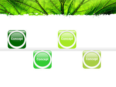 Leaf Close Up Texture PowerPoint Template Slide 19