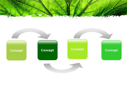 Leaf Close Up Texture PowerPoint Template, Slide 4, 05194, Nature & Environment — PoweredTemplate.com