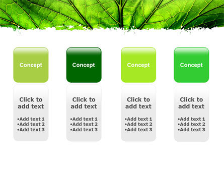 Leaf Close Up Texture PowerPoint Template Slide 5