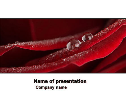 Holiday/Special Occasion: Rosebud PowerPoint Template #05211
