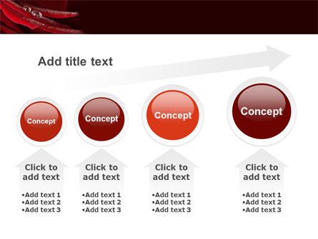 Rosebud PowerPoint Template Slide 13