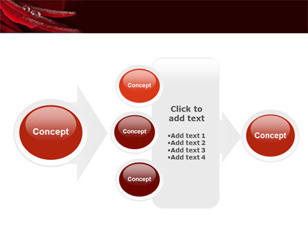Rosebud PowerPoint Template Slide 17