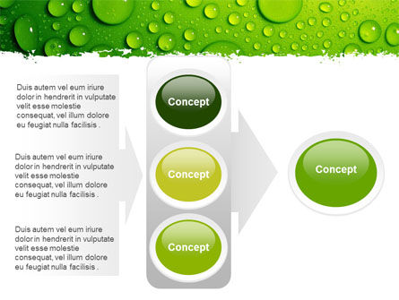Green Water Drops PowerPoint Template Slide 11