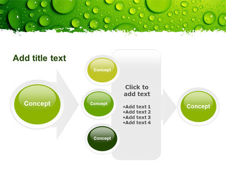 Green Water Drops PowerPoint Template Slide 17