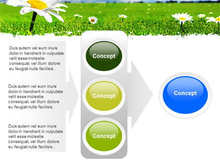 Spring Field PowerPoint Template Slide 11