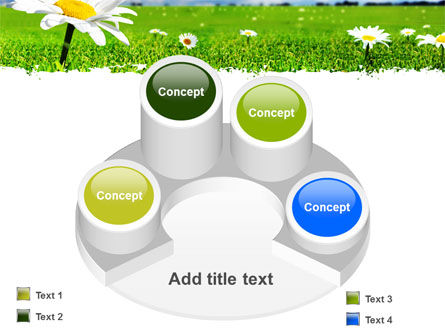 Spring Field PowerPoint Template Slide 12