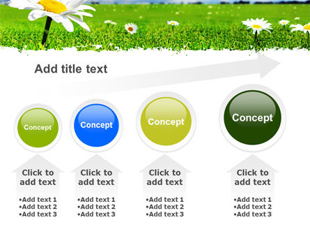 Spring Field PowerPoint Template Slide 13