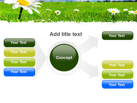 Spring Field PowerPoint Template Slide 14