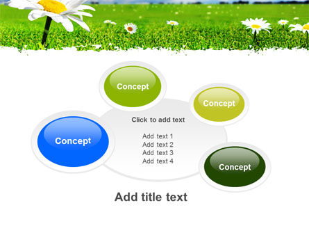 Spring Field PowerPoint Template Slide 16