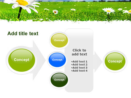 Spring Field PowerPoint Template Slide 17
