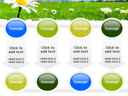 Spring Field PowerPoint Template Slide 18