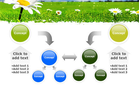 Spring Field PowerPoint Template Slide 19