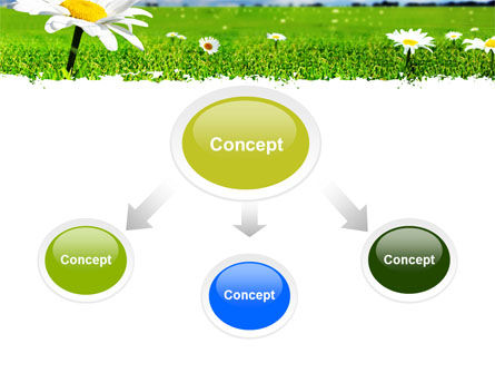 Spring Field PowerPoint Template Slide 4
