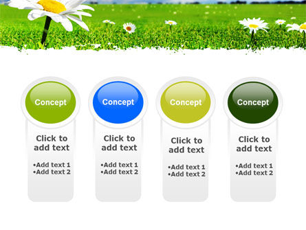 Spring Field PowerPoint Template Slide 5
