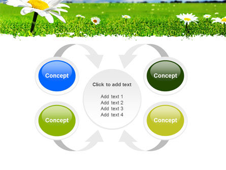 Spring Field PowerPoint Template Slide 6