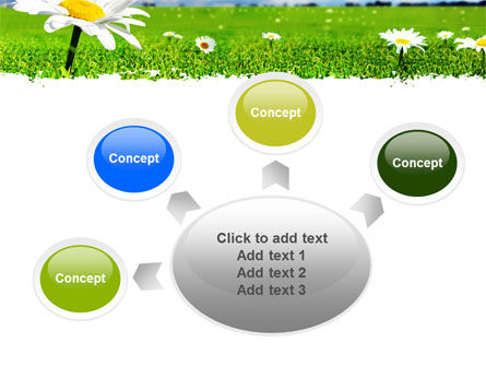 Spring Field PowerPoint Template Slide 7