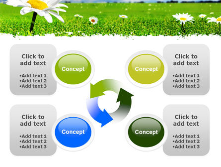 Spring Field PowerPoint Template Slide 9