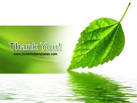 Green Leaf Falling PowerPoint Template Slide 20