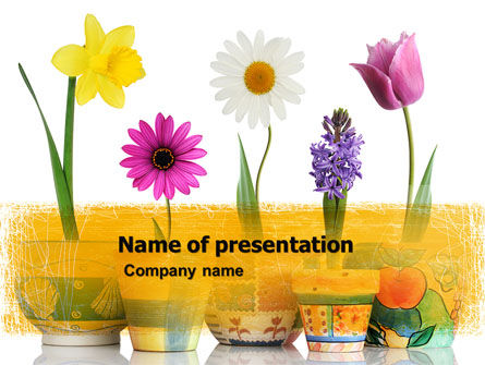 Holiday/Special Occasion: Window Flowers PowerPoint Template #05278