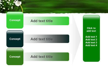Taraxacum PowerPoint Template Slide 12