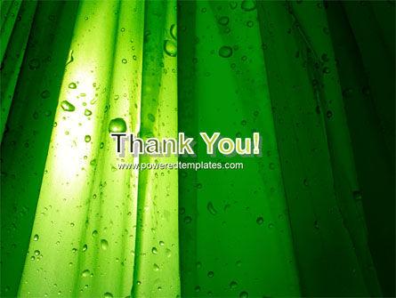 Green Curtain PowerPoint Template Slide 20