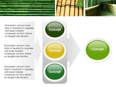 Bamboo Trees PowerPoint Template Slide 11