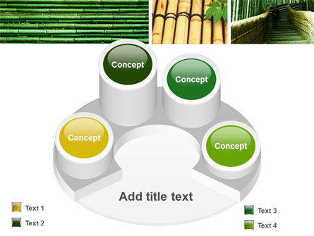 Bamboo Trees PowerPoint Template Slide 12