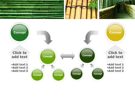Bamboo Trees PowerPoint Template Slide 19