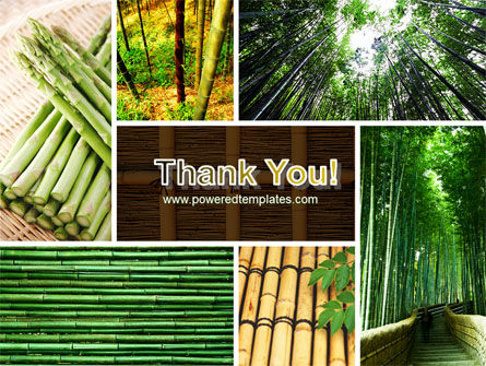 Bamboo Trees PowerPoint Template Slide 20