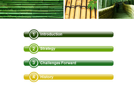 Bamboo Trees PowerPoint Template, Slide 3, 05305, Nature & Environment — PoweredTemplate.com