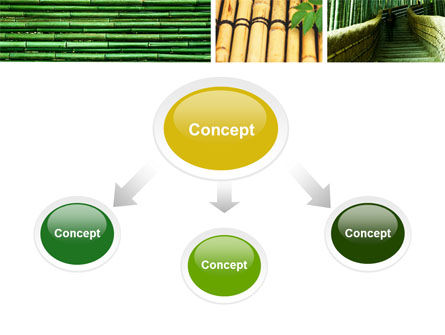 Bamboo Trees PowerPoint Template, Slide 4, 05305, Nature & Environment — PoweredTemplate.com
