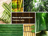 Nature & Environment: Bamboe Bomen PowerPoint Template #05305