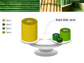 Bamboo Trees PowerPoint Template#10