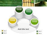 Bamboo Trees PowerPoint Template#12