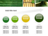 Bamboo Trees PowerPoint Template#13