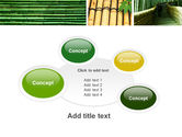 Bamboo Trees PowerPoint Template#16