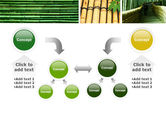 Bamboo Trees PowerPoint Template#19