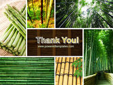 Bamboo Trees PowerPoint Template#20