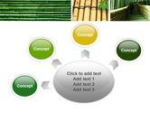 Bamboo Trees PowerPoint Template#7