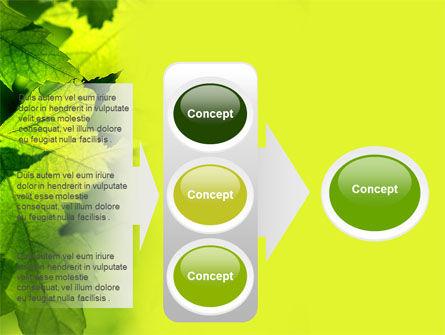 Maple PowerPoint Template Slide 11