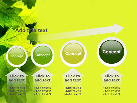 Maple PowerPoint Template Slide 13