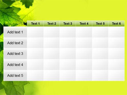 Maple PowerPoint Template Slide 15