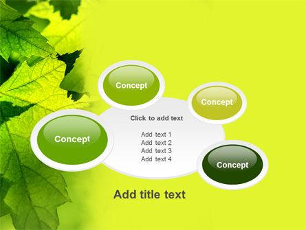 Maple PowerPoint Template Slide 16